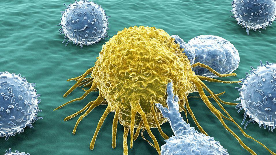 【头条】《康桥讲堂》第二十八期:《丝路前传同位素视角下的粟黍西传之路》和《免疫疗法,治疗肿瘤的新希望》