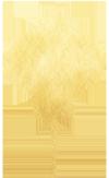 """【2020""""华彩乐章""""剑桥学联春晚】全剑桥招募春晚汉服走秀演员!"""