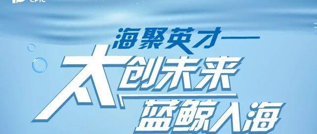 """【就业资讯】海聚英才—""""太创未来 蓝鲸入海""""2020年中国太保校园扩招行动正式启幕"""